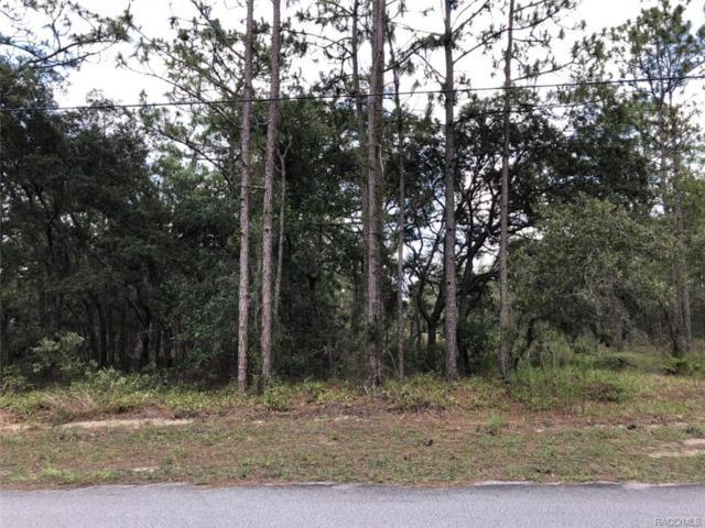 5 Maidenbush Circle, Homosassa, FL 34446 (MLS #774531) :: Plantation Realty Inc.