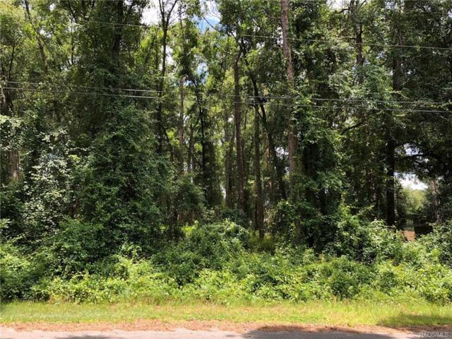 6701 E Mobile Street, Inverness, FL 34452 (MLS #774544) :: Plantation Realty Inc.