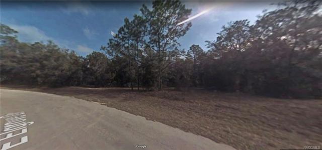 429 E Elgrove Drive, Citrus Springs, FL 34434 (MLS #774551) :: Plantation Realty Inc.
