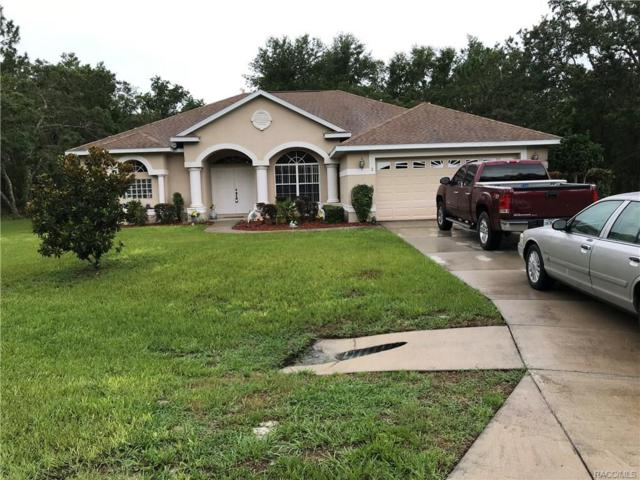 2 Woodlee Court S, Homosassa, FL 34446 (MLS #774574) :: Plantation Realty Inc.