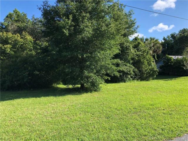 8458 W Buckwood Court, Homosassa, FL 34448 (MLS #774598) :: Plantation Realty Inc.