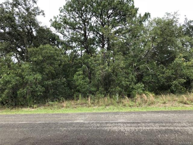 7171 S Maxwell Point, Homosassa, FL 34446 (MLS #774613) :: Plantation Realty Inc.