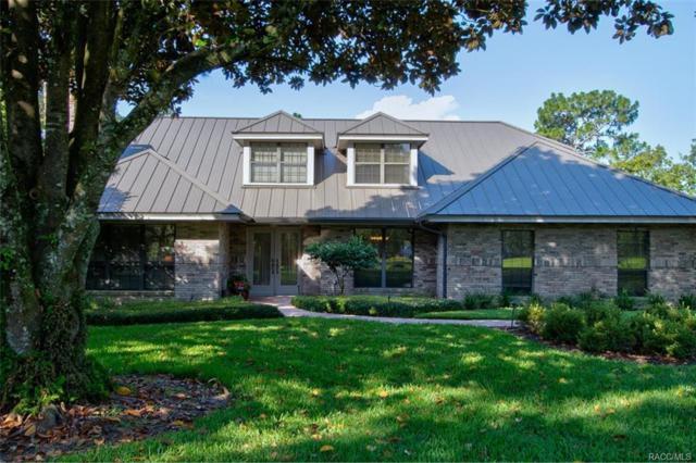 3631 N Moss Creek Point, Lecanto, FL 34461 (MLS #774628) :: Plantation Realty Inc.