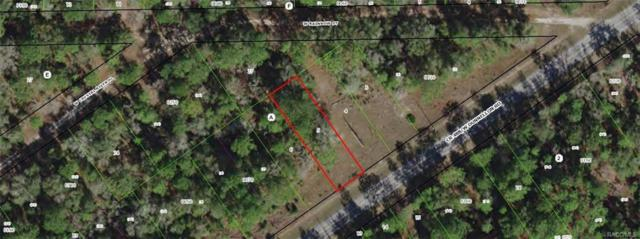 7407 & 7411 W Dunnellon Road, Dunnellon, FL 34433 (MLS #774646) :: Plantation Realty Inc.