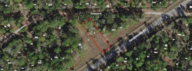 7395 Dunnellon Road, Dunnellon, FL 34433 (MLS #774647) :: Plantation Realty Inc.