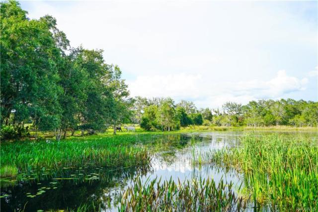 9209 E Gospel Island Road S, Inverness, FL 34450 (MLS #774674) :: Plantation Realty Inc.