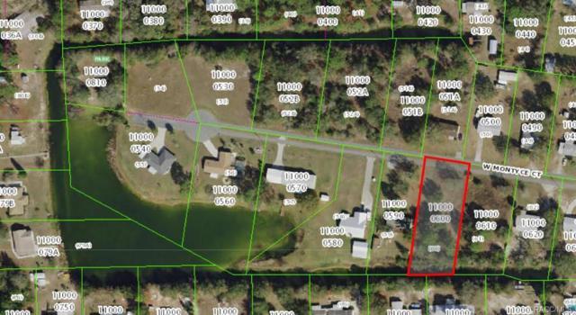 10194 W Montyce Court, Crystal River, FL 34428 (MLS #774719) :: Plantation Realty Inc.