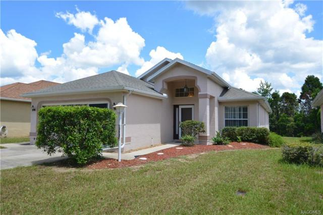 10437 S Drew Bryant Circle, Floral City, FL 34436 (MLS #774731) :: Plantation Realty Inc.
