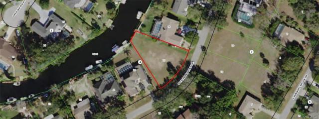 5116 S Stetson Point Drive, Homosassa, FL 34448 (MLS #774747) :: Plantation Realty Inc.