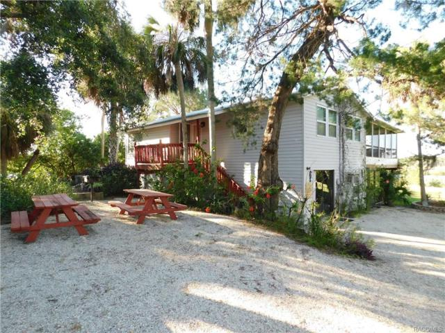 14195 W Beachview Drive, Crystal River, FL 34429 (MLS #774758) :: Plantation Realty Inc.
