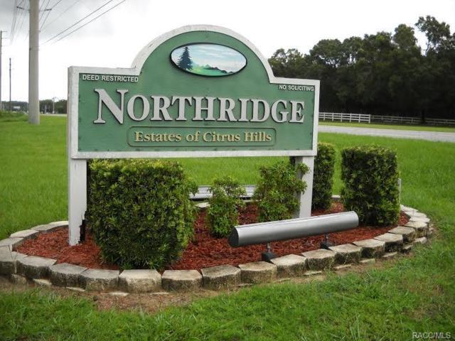 762 E Dunbar Lane, Hernando, FL 34442 (MLS #774834) :: Plantation Realty Inc.