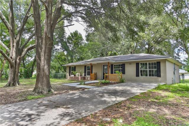 710 Randolph Avenue, Inverness, FL 34453 (MLS #774883) :: Plantation Realty Inc.