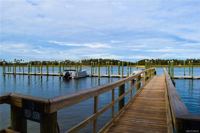 11981 W Edgeview Court, Crystal River, FL 34429 (MLS #774899) :: Plantation Realty Inc.