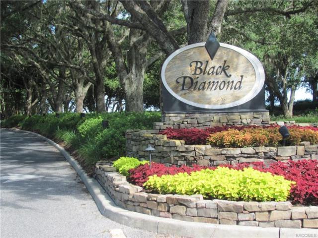 3079 W Heather Dunes Court, Lecanto, FL 34461 (MLS #774910) :: Plantation Realty Inc.