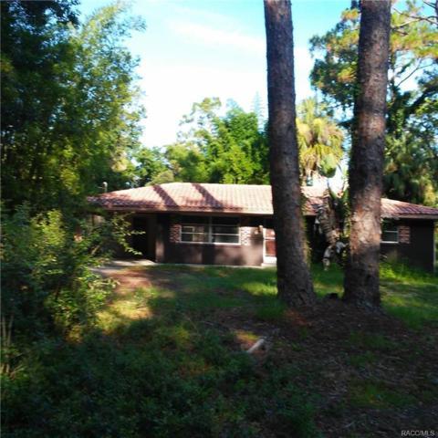 6 Hickory Avenue, Yankeetown, FL 34498 (MLS #774920) :: Plantation Realty Inc.