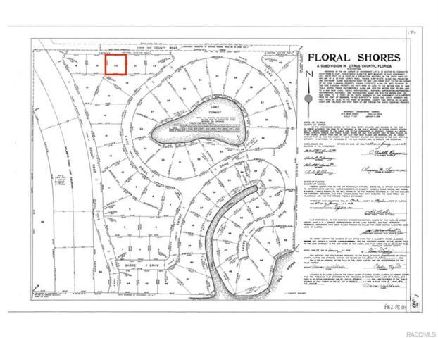 8486 E Hampton Point Road, Floral City, FL 34450 (MLS #774959) :: Plantation Realty Inc.