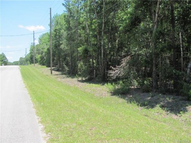 675 E Overdrive Circle, Hernando, FL 34442 (MLS #775021) :: Plantation Realty Inc.