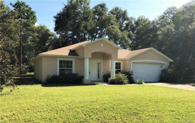 10785 N Didiscus Drive, Citrus Springs, FL 34434 (MLS #775031) :: Plantation Realty Inc.