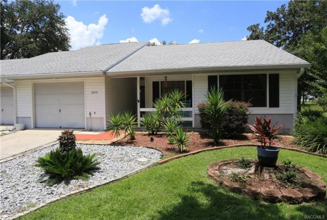 2273 N Volusia Point, Hernando, FL 34442 (MLS #775071) :: Plantation Realty Inc.
