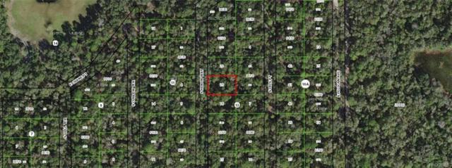3965 S Heron Way, Inverness, FL 34450 (MLS #775086) :: Plantation Realty Inc.
