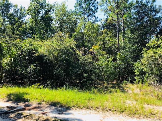 6680 W Tortoise Lane, Homosassa, FL 34448 (MLS #775087) :: Plantation Realty Inc.