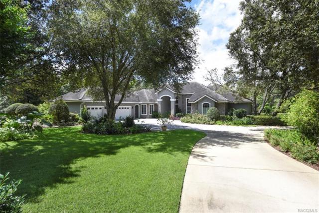 3260 W Castle Pines Loop, Lecanto, FL 34461 (MLS #775132) :: Plantation Realty Inc.