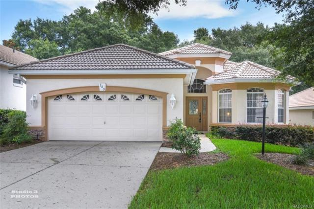 389 W Doerr Path, Hernando, FL 34442 (MLS #775149) :: Plantation Realty Inc.