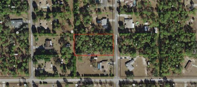 12332 S Hyacinth Point, Floral City, FL 34436 (MLS #775197) :: Plantation Realty Inc.