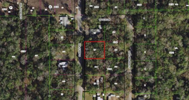 10148 W Dunn Street, Homosassa, FL 34448 (MLS #775216) :: Plantation Realty Inc.
