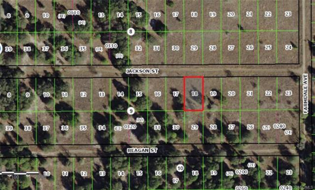 2311 Jackson Street, Inverness, FL 34453 (MLS #775282) :: Plantation Realty Inc.