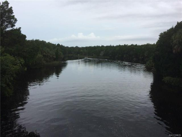 3906 and 3924 N Apalachee Point, Crystal River, FL 34428 (MLS #775323) :: Team 54