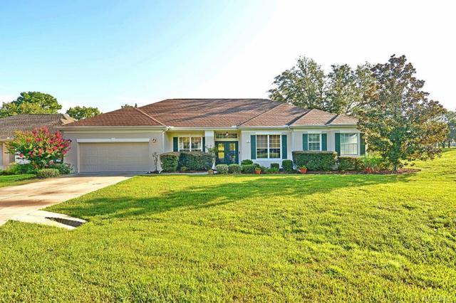 15 Woodash Court, Homosassa, FL 34446 (MLS #775345) :: Plantation Realty Inc.