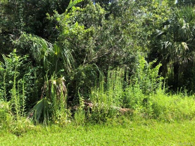 1420 N Flossfleur Terrace, Crystal River, FL 34429 (MLS #775359) :: Plantation Realty Inc.