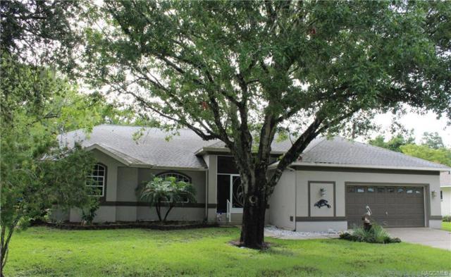 1015 SE 5th Avenue, Crystal River, FL 34429 (MLS #775361) :: Plantation Realty Inc.