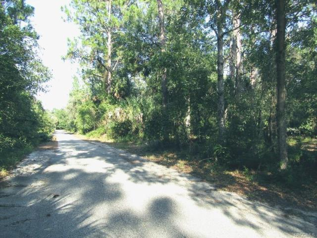 9876 W Wedgewood Court, Crystal River, FL 34428 (MLS #775403) :: Plantation Realty Inc.