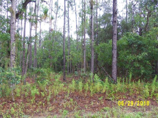4118 N Mayan Drive, Hernando, FL 34442 (MLS #775421) :: Plantation Realty Inc.