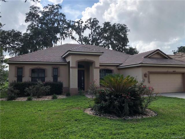 1133 W Beagle Run Loop, Hernando, FL 34442 (MLS #775428) :: Plantation Realty Inc.