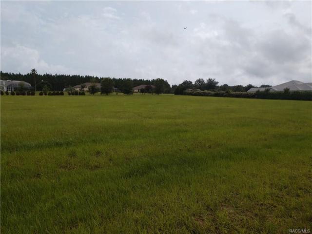 626 E Bismark Street, Hernando, FL 34465 (MLS #775434) :: Plantation Realty Inc.