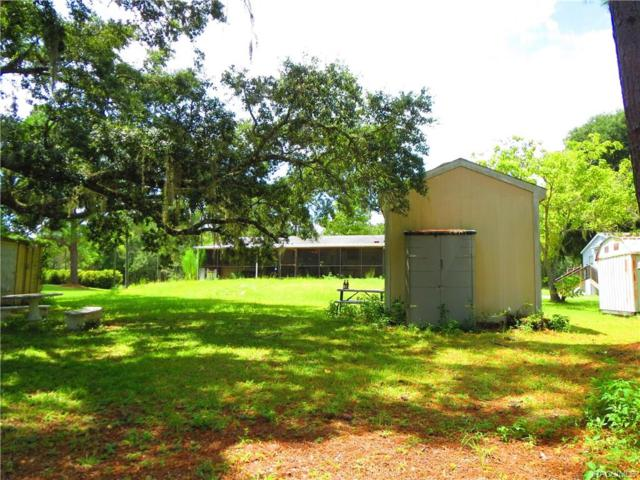 4933 E Stokes Ferry Road, Hernando, FL 34442 (MLS #775451) :: Plantation Realty Inc.