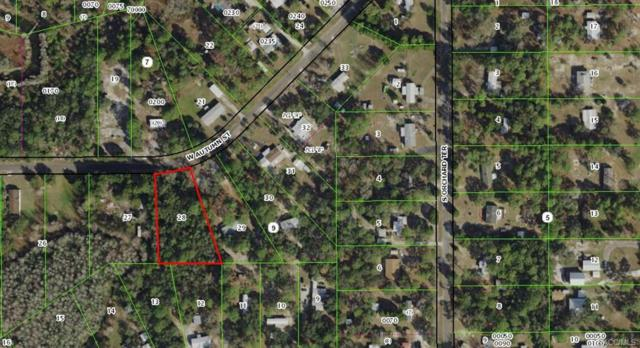 7598 W Autumn Street, Homosassa, FL 34446 (MLS #775495) :: Plantation Realty Inc.