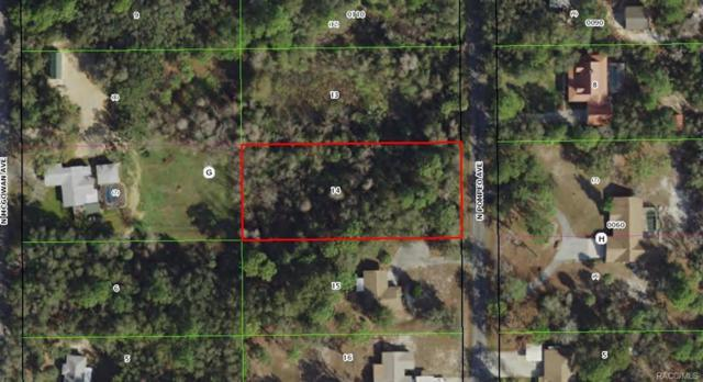 904 N Pompeo Avenue, Crystal River, FL 34429 (MLS #775497) :: Plantation Realty Inc.