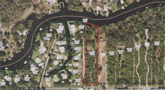 16483 W River Road, Inglis, FL 34449 (MLS #775522) :: Plantation Realty Inc.