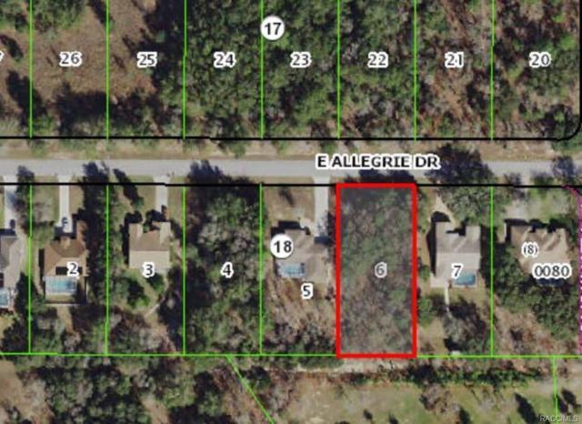 1508 E Allegrie Drive, Inverness, FL 34453 (MLS #775523) :: Plantation Realty Inc.