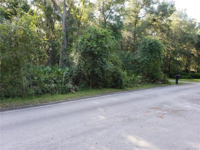 10327 N Big Bass Trail, Dunnellon, FL 34434 (MLS #775534) :: Plantation Realty Inc.