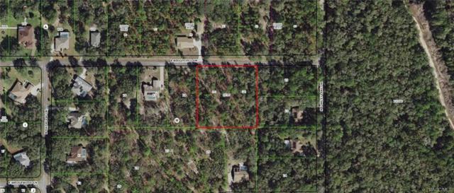 1802 E Ridgefield Drive, Hernando, FL 34442 (MLS #775573) :: Plantation Realty Inc.