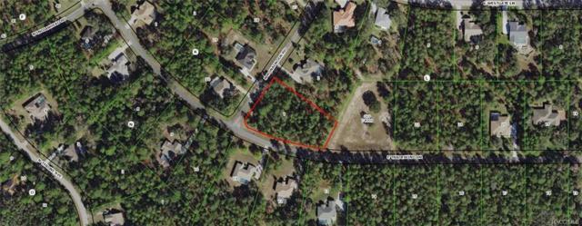 3795 N Monadnock Road, Hernando, FL 34442 (MLS #775579) :: Plantation Realty Inc.