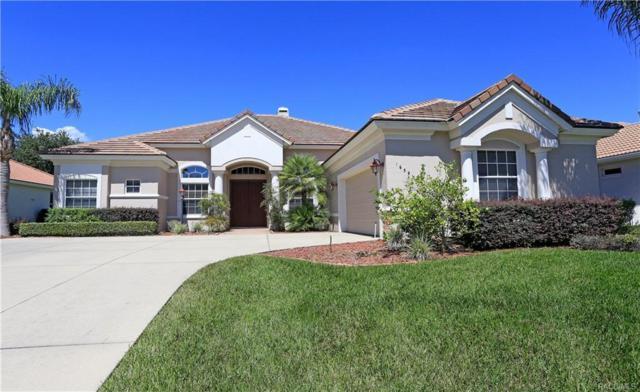 1659 N Dimaggio Path, Hernando, FL 34442 (MLS #775615) :: Plantation Realty Inc.