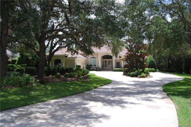 3236 W Castle Pines Loop, Lecanto, FL 34461 (MLS #775637) :: Plantation Realty Inc.