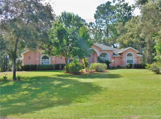 5439 N Mint Point, Beverly Hills, FL 34465 (MLS #775651) :: Plantation Realty Inc.