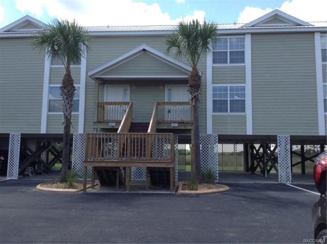 2873 N Rivers Edge Boulevard, Crystal River, FL 34429 (MLS #775702) :: Plantation Realty Inc.